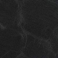 ヨーロピアンポニー ブラック