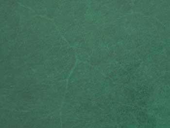 血筋の画像(グリーン色)